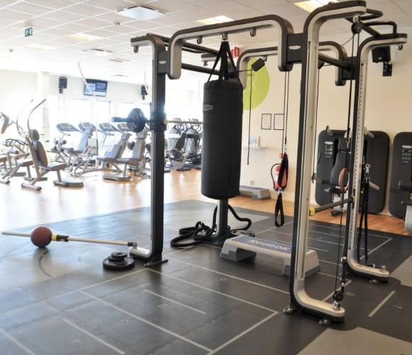Gym i Uppsala - MyTraining - Vattholmavägen